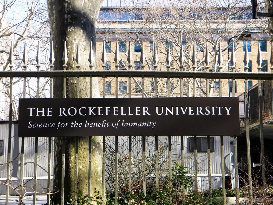 Dünyanın en iyi 100 üniversitesi 37