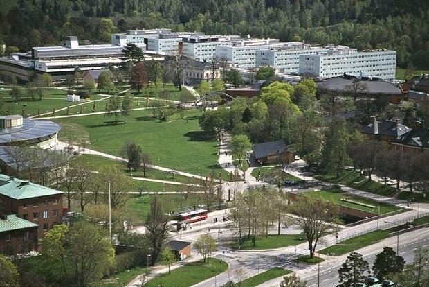 Dünyanın en iyi 100 üniversitesi 81