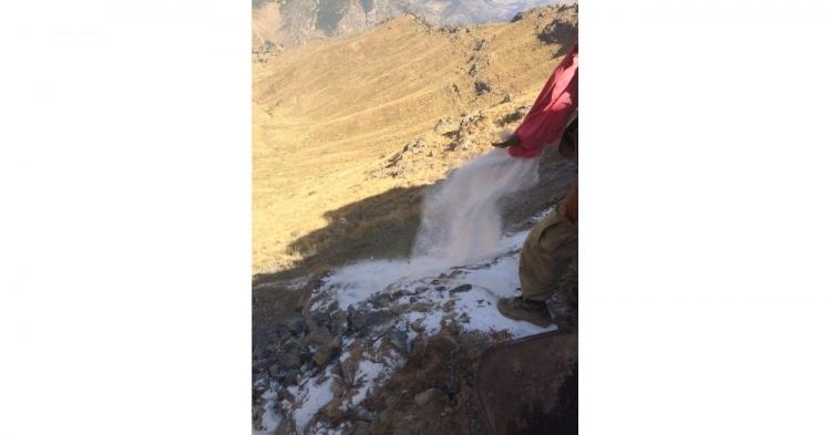 PKK'lı cesetleri etrafa saçılmış! 5