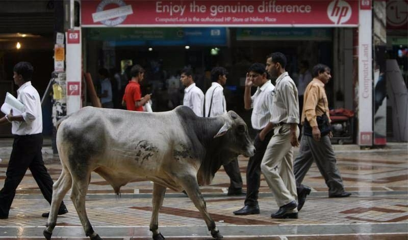 Sadece Hindistan'da görebileceğiniz fotoğraflar 34