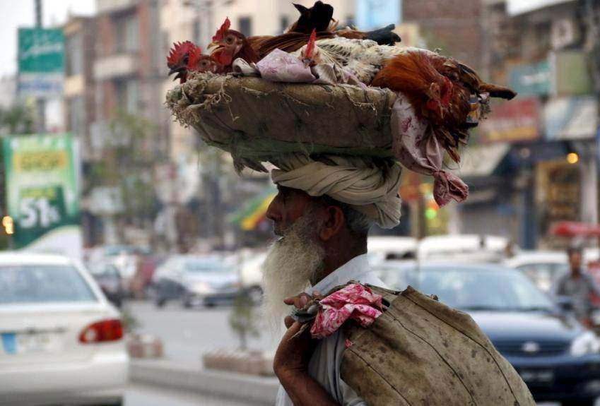 Sadece Hindistan'da görebileceğiniz fotoğraflar 4