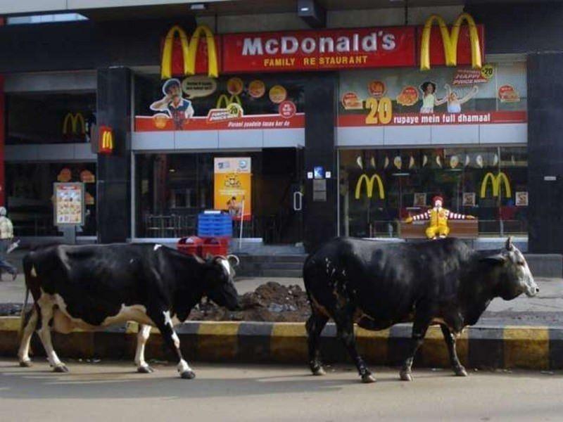 Sadece Hindistan'da görebileceğiniz fotoğraflar 7