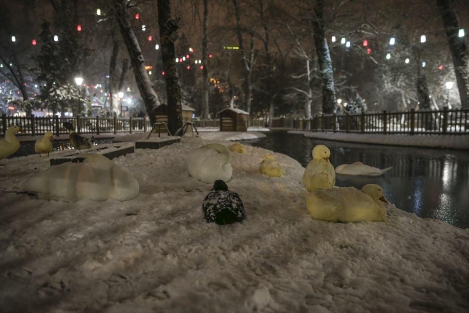 Türkiye'den muhteşem kar manzaraları 10