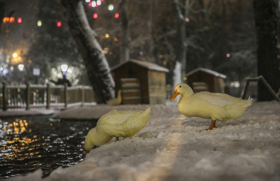 Türkiye'den muhteşem kar manzaraları 11