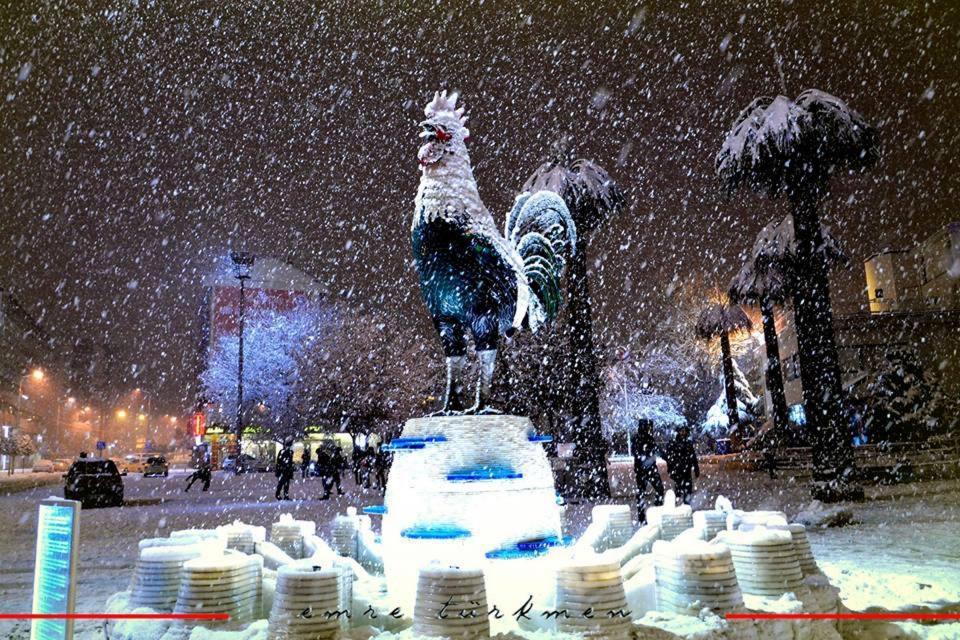 Türkiye'den kar manzaraları 110