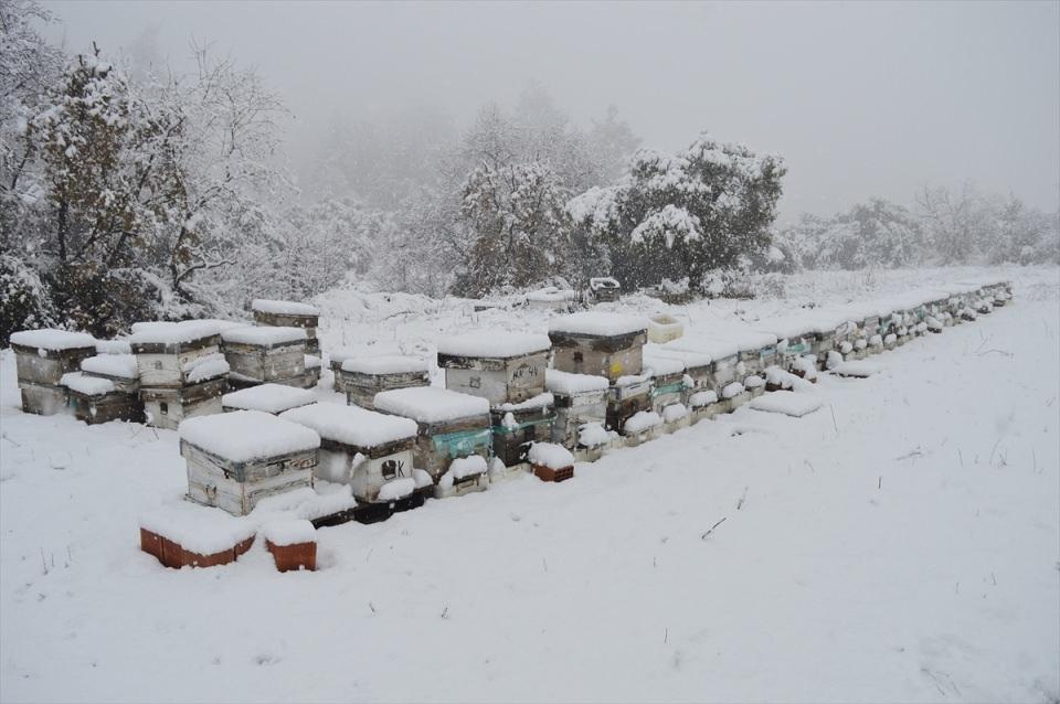 Türkiye'den kar manzaraları 115