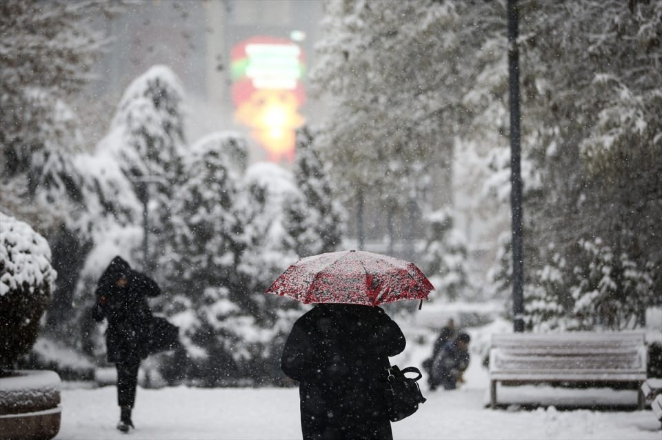 Türkiye'den kar manzaraları 19