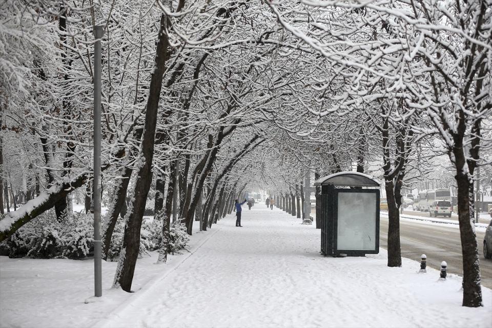 Türkiye'den kar manzaraları 60