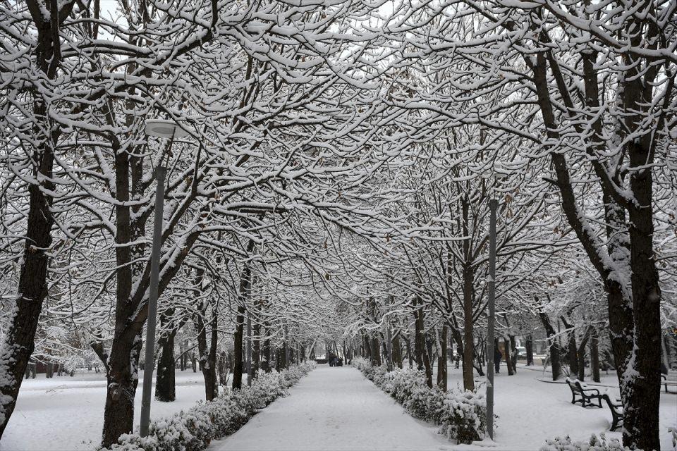 Türkiye'den kar manzaraları 65