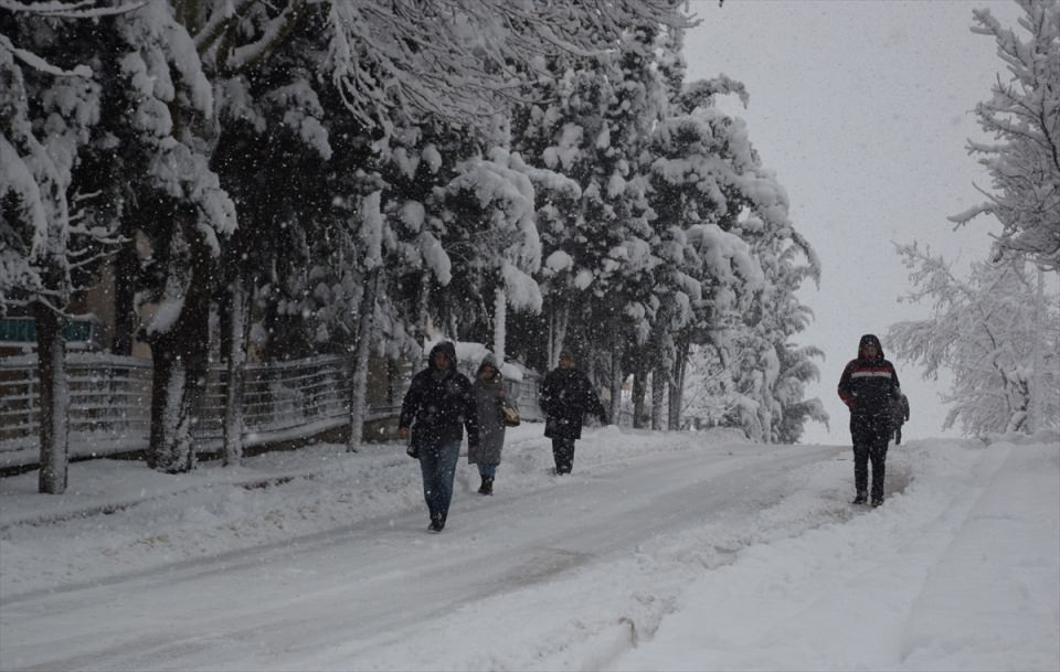 Türkiye'den kar manzaraları 74