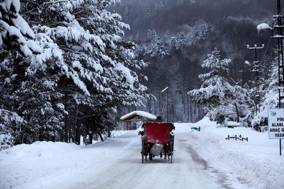 Türkiye'den kar manzaraları 94