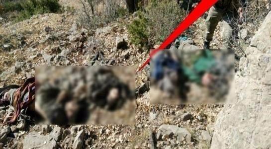 Diyarbakır'da terör operasyonu 175
