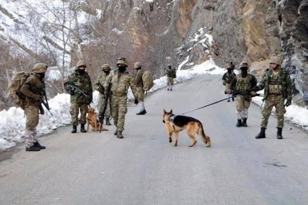 Tunceli'de terör örgütüne operasyon 41
