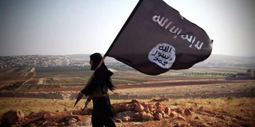 DEAŞ içinde hangi ülkeden kaç terörist var?