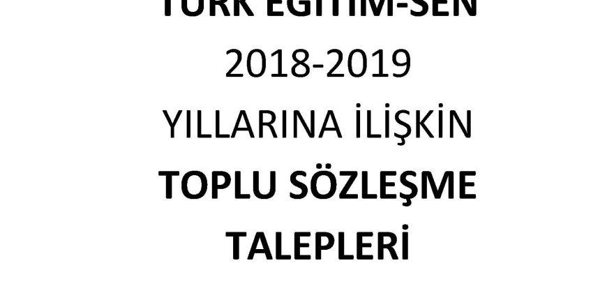 Türk Eğitim-Sen Toplu Sözleşme Talepleri - MEB-YÖK-KREDİ YURTLAR