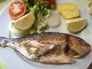 Balığın insan vücuduna sağladığı 14 fayda