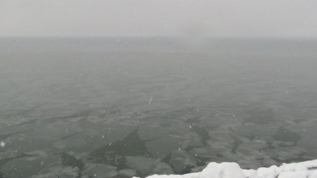 Van Gölü buz tuttu, görenler şaşırdı! 1