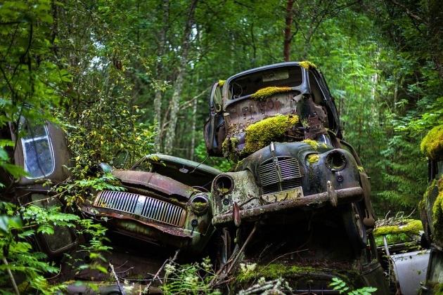 Ormandaki Gizemli Araba Mezarlığı Foto Galerisi 13 Resim