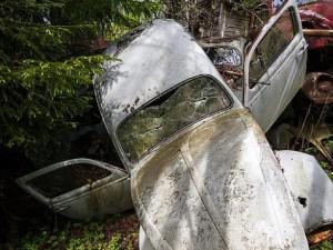 Ormandaki gizemli araba mezarlığı