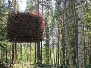 Birbirinden harika ağaç evler