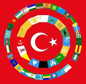 Bizim Milletimiz, Türk Irkından Çıkmıştır