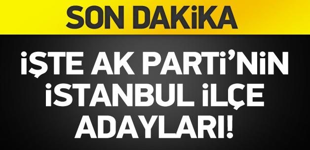 İşte AK Parti'nin İstanbul ilçe adayları