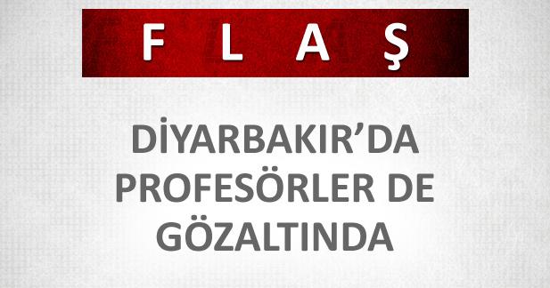 Diyarbakır'da profesörler de gözaltında