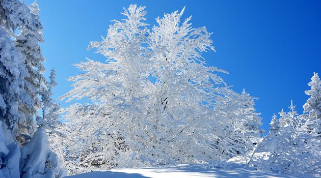 Yılbaşı tatili kaç gün? 31 Aralık tatil mi?