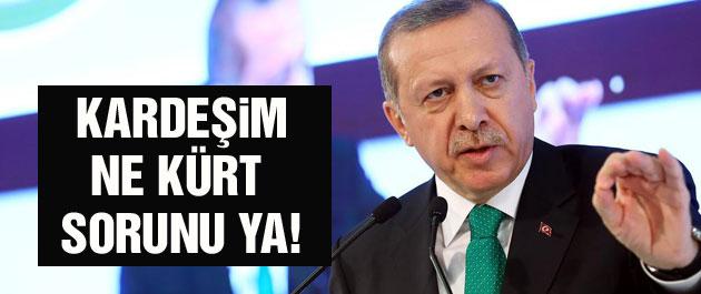 Erdoğan: Kardeşim ne Kürt sorunu ya!