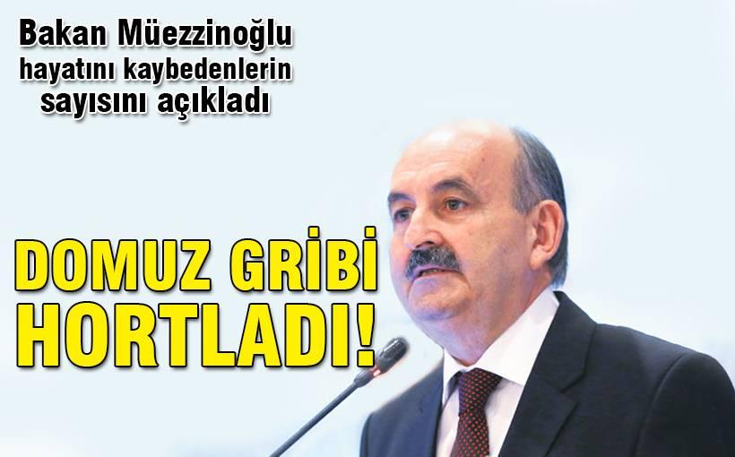 İstanbul'da domuz gribi paniği!
