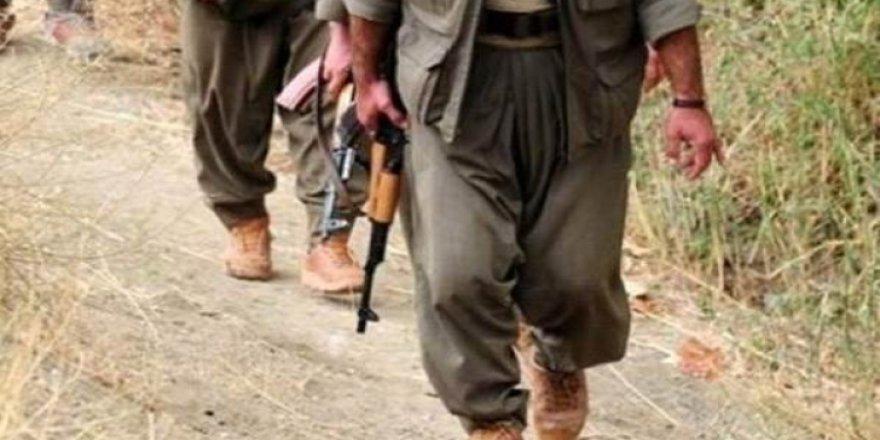 Mardin'de 2 terörist sağ yakalandı: Biri bombacı çıktı