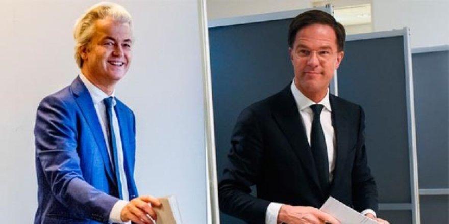 Hollanda seçim sonuçları belli oldu