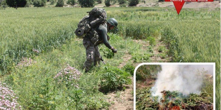 Diyarbakır'da 10 Bin Personelle Dev Operasyon