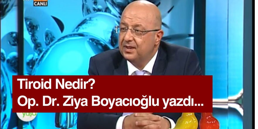 Ziya Boyacıoğlu: Tiroid Hastalıkları Nelerdir?
