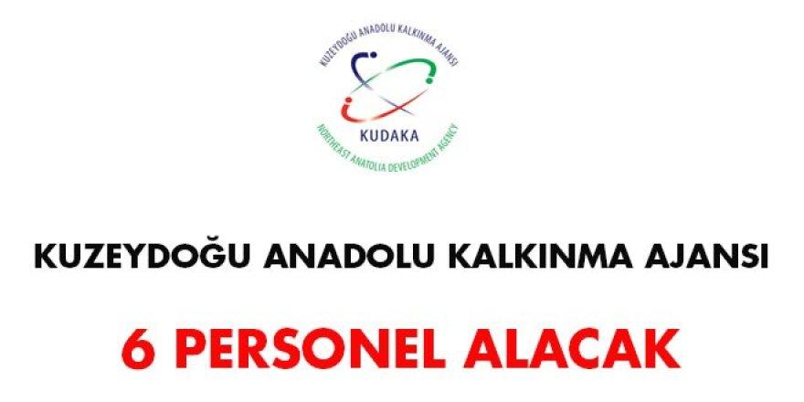 Kuzeydoğu Anadolu Kalkınma Ajansı Personel Alım İlanı