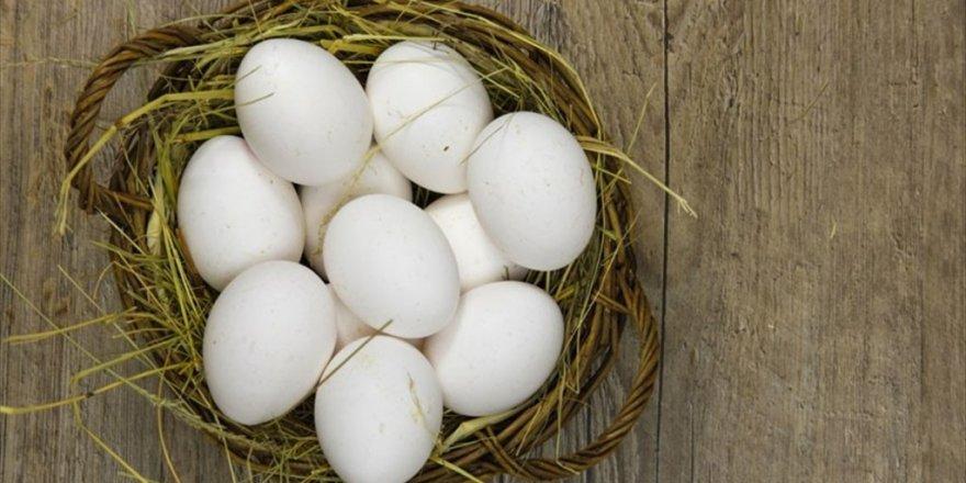 'Yumurta, anne sütünden sonra en önemli protein'