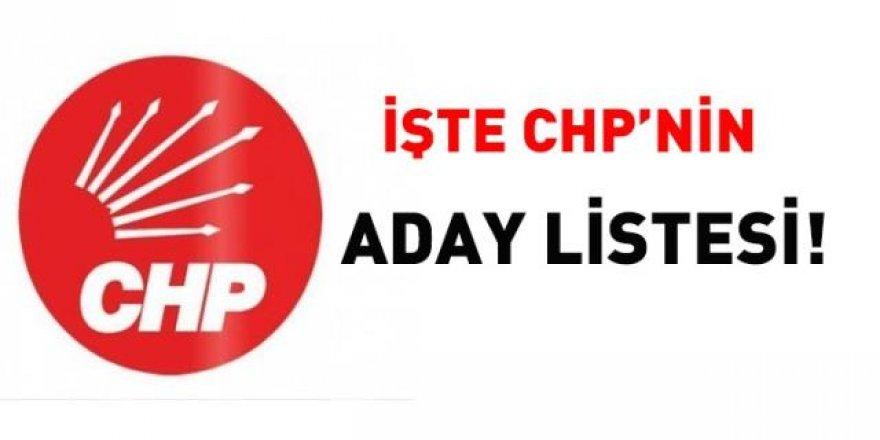 İşte CHP'nin aday listesi!