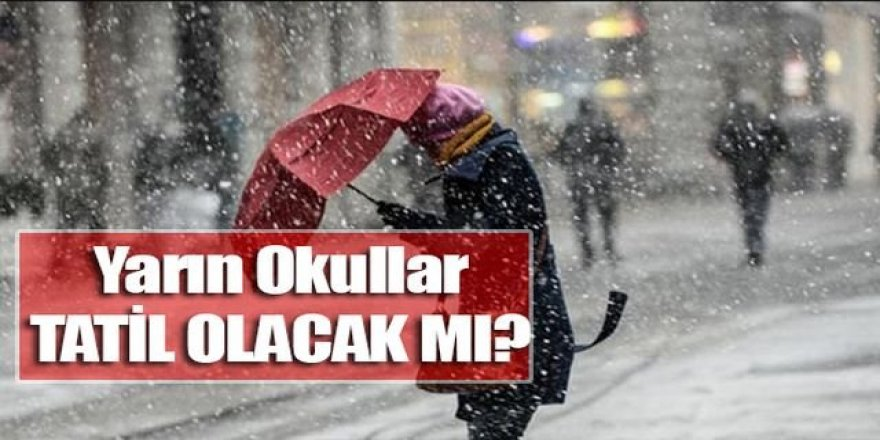 7 Ocak 2019 Okullar Tatil mi - Kar tatili olan İller