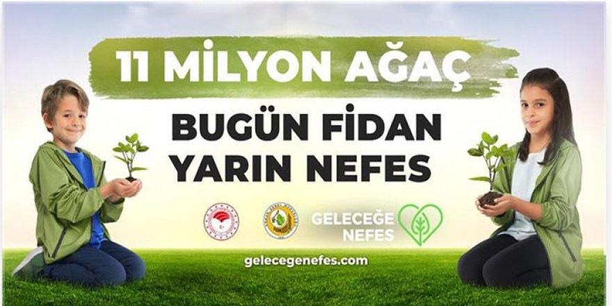 """Türkiye Kamu-Sen'den """"Geleceğe Nefes"""" Kampanyasına Destek"""