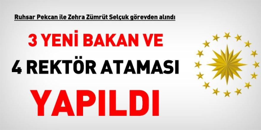 Cumhurbaşkanı Erdoğan 3 yeni Bakan atadı