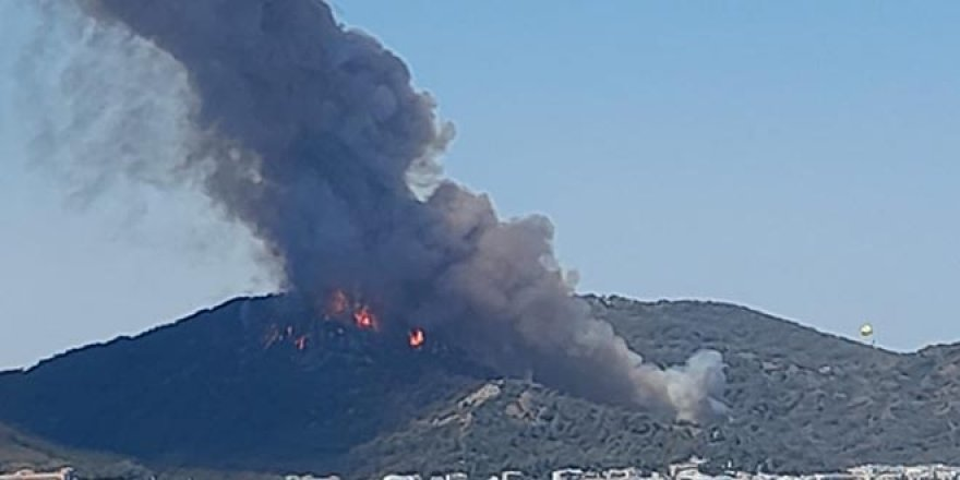 Yangın haberleri gelmeye devam ediyor: Bodrum, Milas, Söke, Alanya, Didim...