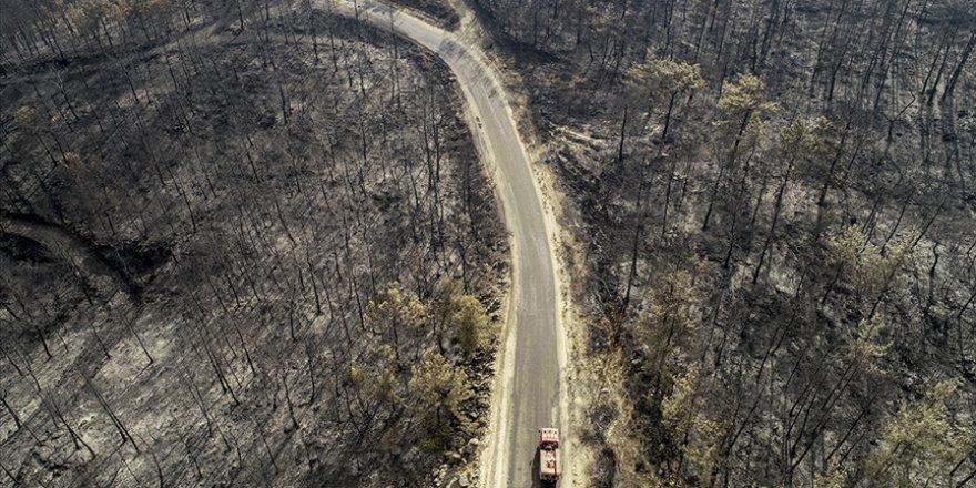 """""""5 ilde yangından etkilenen alanlar 'afet bölgesi' ilan edildi"""""""