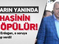 Erdoğan: Bunların yanında Haşhaşi'nin eli öpülür