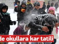 Kar yağışı nedeniyle 19 ilde okullar tatil edildi