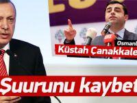 Erdoğan'dan Demirtaş'a 'Çanakkale' çıkışı