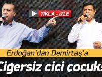 Erdoğan'dan Demirtaş'a: Ciğersiz Cici Çocuk