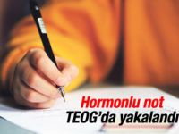 Özel okullarda hormonlu not yakalandı