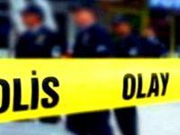 Şanlıurfa Valisi: 2 polis şehit edildi