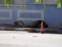 Tunceli'de 2 PKK'lının öldürülme anı kamerada