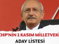 CHP'nin 1 Kasım tam aday listesi